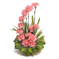 Pink Carnation Basket 24 Flowers with Rakhi Delivery in India