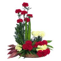 Deliver Rakhi with Red Yellow Carnation Basket 24 Flowers to India