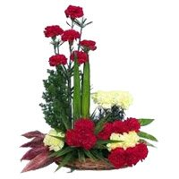 Send Red Yellow Carnation Arrangement 24 Flowers with Rakhi to India