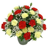 Send Red Yellow Carnation Vase 24 Flowers in India with Rakhi