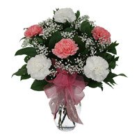 Rakhi with Pink White Carnation Vase 12 Flowers to India for brother