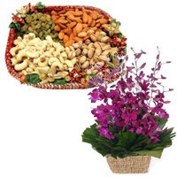 Online Rakhi with Purple Orchids Basket, Assorted Dry Fruits Delivery in India