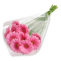 Send Pink Gerbera Bouquet with Rakhi to India for brother