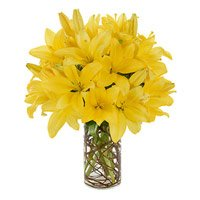 Order Rakhi and Yellow Lily Flowers to India