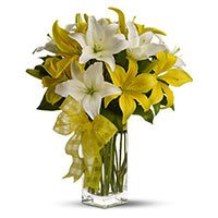 Deliver Rakhi with White Yellow Lily Vase 6 Flower in India