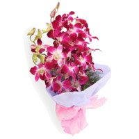 Send Purple Orchid Bunch and Rakhi Delivery in India