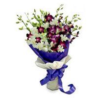 Send Purple White Orchid Bunch 10 Flowers Stem with 2 Free Rakhi delivery in India on Rakhi