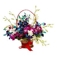 Send Rakhi with Mixed Orchid Basket