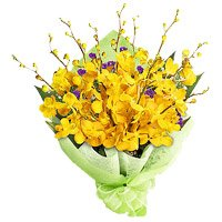 Deliver Rakhi with Yellow Orchid Bunch Flowers in India