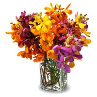 Rakhi with Mixed Orchid Flower Vase Delivery in India