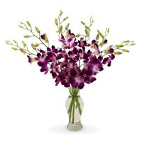 Send Purple Orchid Vase with Rakhi to India